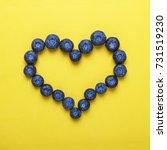 style minimalism. blueberries... | Shutterstock . vector #731519230