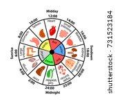 daily biorhythm of internal... | Shutterstock .eps vector #731523184