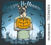 vector illustration of cat...   Shutterstock .eps vector #731546314