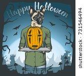 vector illustration of cat...   Shutterstock .eps vector #731546494