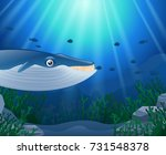 cartoon whale with coral reef... | Shutterstock . vector #731548378