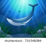 cartoon whale with coral reef... | Shutterstock .eps vector #731548384
