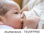 breastfeeding at home. | Shutterstock . vector #731597950