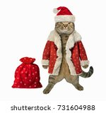 Cat In Santa Claus Clothes And...