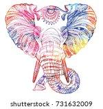 the head of an elephant.... | Shutterstock .eps vector #731632009