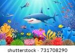 cartoon shark with coral reef... | Shutterstock . vector #731708290