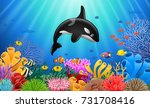 cartoon killer whale with coral ... | Shutterstock . vector #731708416