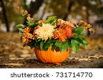 Orange Pumpkin With A Lovely...