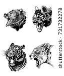 graphical set of wild animals... | Shutterstock .eps vector #731732278