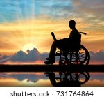 a disabled person in a...   Shutterstock . vector #731764864
