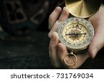 close up of hand holding... | Shutterstock . vector #731769034