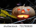 halloween pumpkin head  on... | Shutterstock . vector #731783830