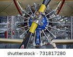 sao carlos  sao paulo  brazil   ... | Shutterstock . vector #731817280