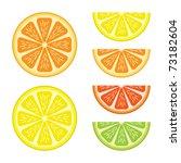 halves and segments of vector... | Shutterstock .eps vector #73182604