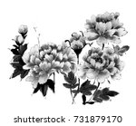 chinese ink painting peony | Shutterstock . vector #731879170