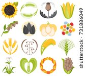 cereal seeds grain product... | Shutterstock .eps vector #731886049