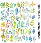 watercolor natural collection ... | Shutterstock . vector #731900488