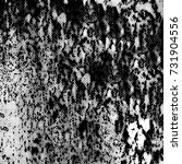 black and white texture of... | Shutterstock . vector #731904556