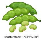 green beans on white background ... | Shutterstock .eps vector #731947804