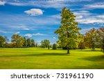 green grass field in a... | Shutterstock . vector #731961190