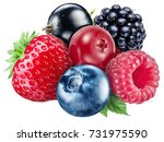berries on a white background.... | Shutterstock . vector #731975590