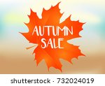 autumn sale background with... | Shutterstock .eps vector #732024019