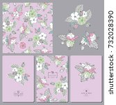 floral collection. seamless... | Shutterstock .eps vector #732028390