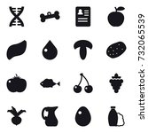 16 vector icon set   dna  bone  ... | Shutterstock .eps vector #732065539