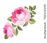 the rose elegant card. a spring ... | Shutterstock .eps vector #732114193