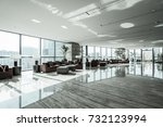 luxury lobby interior. | Shutterstock . vector #732123994