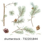 collection of pine branches and ... | Shutterstock .eps vector #732201844