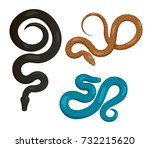 curved slither pythons or... | Shutterstock .eps vector #732215620
