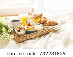 continental breakfast on white... | Shutterstock . vector #732231859
