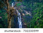 water wall with nature | Shutterstock . vector #732233599