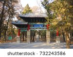 temple and cemetery of... | Shutterstock . vector #732243586