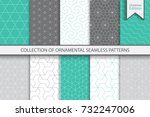 collection of seamless... | Shutterstock .eps vector #732247006