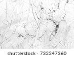 marble texture background   Shutterstock . vector #732247360