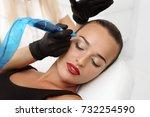 cosmetologist applying...   Shutterstock . vector #732254590