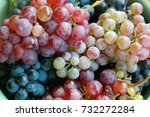 red and white grapes | Shutterstock . vector #732272284