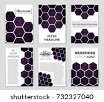 abstract vector layout... | Shutterstock .eps vector #732327040
