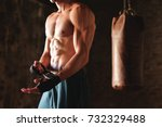 close up of a boy's muscles... | Shutterstock . vector #732329488