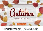 autumn seasonal sale web banner ... | Shutterstock .eps vector #732330004