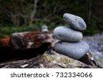 hike down deception pass on... | Shutterstock . vector #732334066
