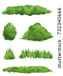 set of watercolor bushes and... | Shutterstock . vector #732340666