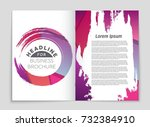 abstract vector layout... | Shutterstock .eps vector #732384910