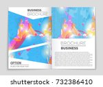 abstract vector layout... | Shutterstock .eps vector #732386410