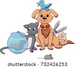 Stock vector group of pets from a pet shop sitting together cat dog fish hamster bunny mouse bird vector 732426253