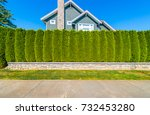 nicely trimmed bushes  in front ... | Shutterstock . vector #732453280