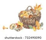 wicker basket with mushrooms...   Shutterstock . vector #732490090