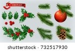 christmas decorations. holly ... | Shutterstock .eps vector #732517930